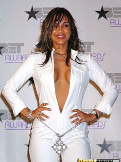 Sexy LisaRaye exposes her boobies dressed in a plunging neckline while at the red carpet
